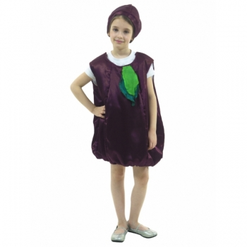 Карнавальный костюм Слива арт. 106 008